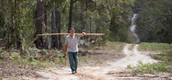 A man walking on a train in bush carrying a long branch on his shoulders